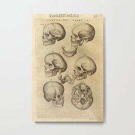 Juan Valverde de Amusco - Skulls Metal Print