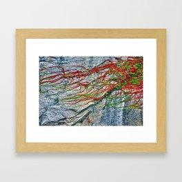Climbing Plant on a Wall Framed Art Print