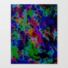 Medicine Canvas Print