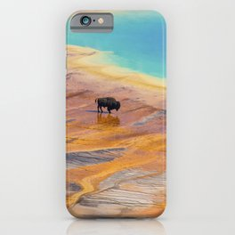 Bison and Grand Prismatic Hot Spring at Yellowstone National Park iPhone Case