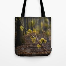 Walking through the forest in early spring Tote Bag