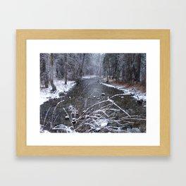 #406 bitterroot 406 bitterroot mt south bear crk Framed Art Print