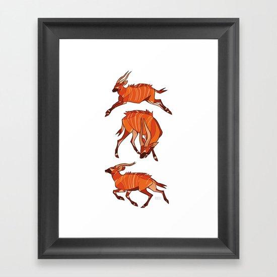 Bongo Antelope Framed Art Print