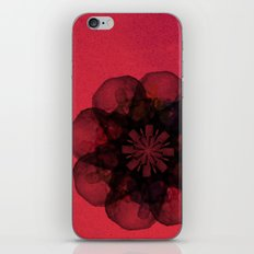 Lilium 'Cameo' iPhone & iPod Skin