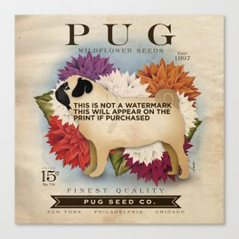 Pug dog seed packet artwork by Stephen Fowler Canvas Print