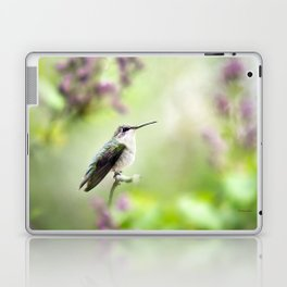 Hummingbird Charm Laptop & iPad Skin