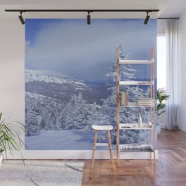 Winter day 27 Wall Mural