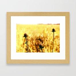 Prairie II Framed Art Print
