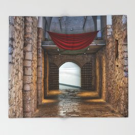 Santa Barbara Castle Throw Blanket