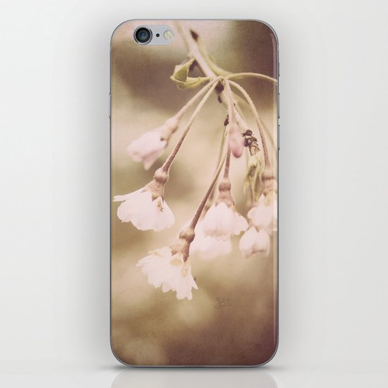 Delicate Spring iPhone & iPod Skin