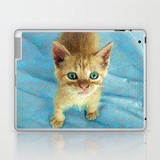 Cute Little Kitten  Laptop & iPad Skin