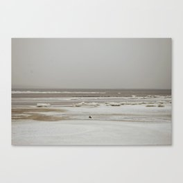 February's waves Canvas Print