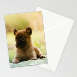 Malinois puppies in the soap blowing game Stationery Cards
