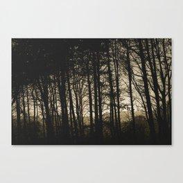 Thin Tree Silhouettes Canvas Print