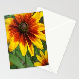 Flower | Flowers | Yellow Gaillardia Daisy | Nature Photography Stationery Cards