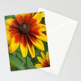 Flower | Flowers | Yellow Gaillardia Daisy | Nature Photography Stationery Cards