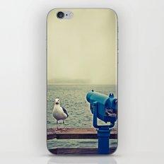 Pier 39, San Francisco, CA iPhone & iPod Skin