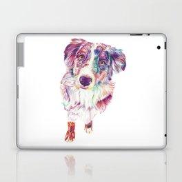 Multicolored Australian Shepherd red merle herding dog Laptop & iPad Skin