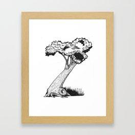 "Native Texas Plants ""Z"" Framed Art Print"