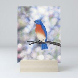 male eastern bluebird bokeh background Mini Art Print
