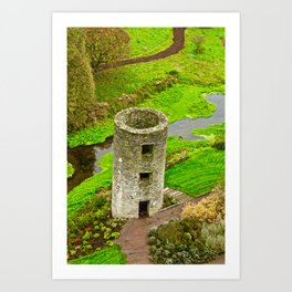 a bunch of blarney  Art Print