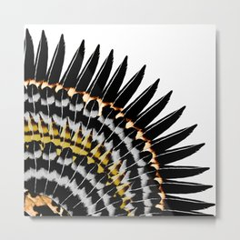 Feather Fringe Metal Print