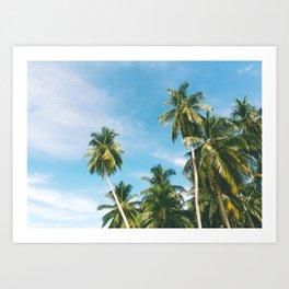 Palms Trees on the San Blas Islands, Panama Art Print