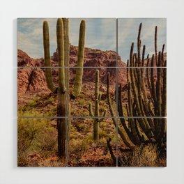 Cacti Variety Wood Wall Art