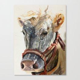 Vaca! (Cow!) Canvas Print
