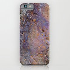 Colors of the Earth iPhone 6s Slim Case