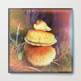 Mushroom 1 Metal Print