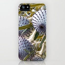 WILD THISTLE iPhone Case