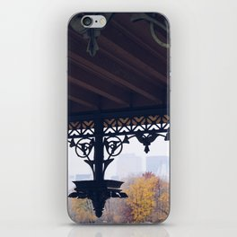 Architecture in Central Park iPhone Skin