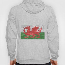 Cloth Material Welsh Dragon Flag Hoody