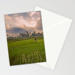 Bali rice field Stationery Cards