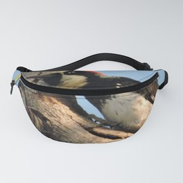 Did You Say HAWK? Fanny Pack