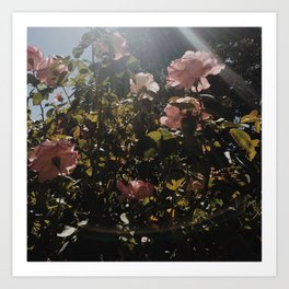 Sunbeam Above Art Print