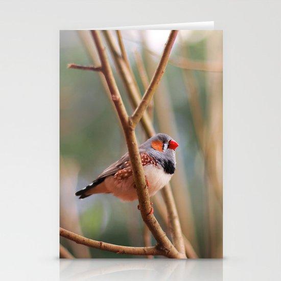 Zebra Finch Stationery Cards