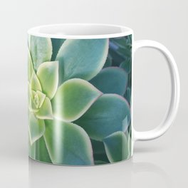 Succulent Plants - Nature Photography Coffee Mug