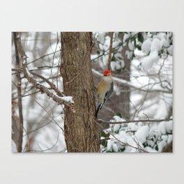 Snow again? Canvas Print