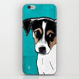 Dog Rat Terrier iPhone Skin