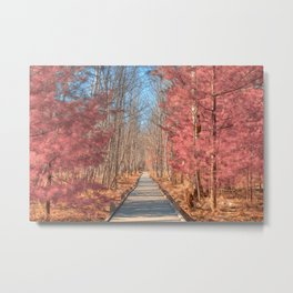 Jesup Boardwalk Trail - Tickle Me Pink Metal Print