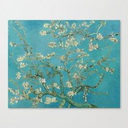 Almond Trees - Vincent Van Gogh Canvas Print