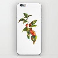 lantern iPhone & iPod Skins featuring Lantern by Chloe Frederik