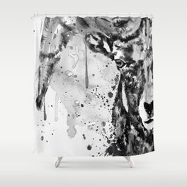 Black and White Half Faced Bighorn Sheep Shower Curtain
