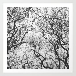 #249 #SleepingTrees Art Print