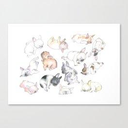 Sleepy French Bulldog Puppies Canvas Print