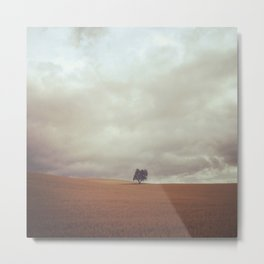 Camino Tree Metal Print