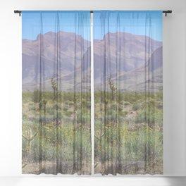 Painted Desert - IV Sheer Curtain