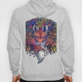 Hiding fox rainbow Hoody